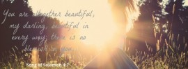 beautiful in every way, Song of Solomon 4:7